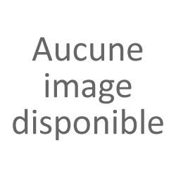 Option sonore pour kit fleuret ou épée